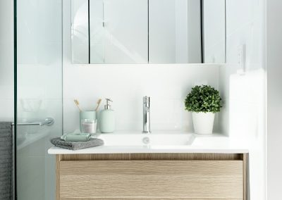 Shaving Cabinet for Storage - Porcelain Vanity top to custom cabinetry